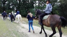 Equitation été 2017 (6)